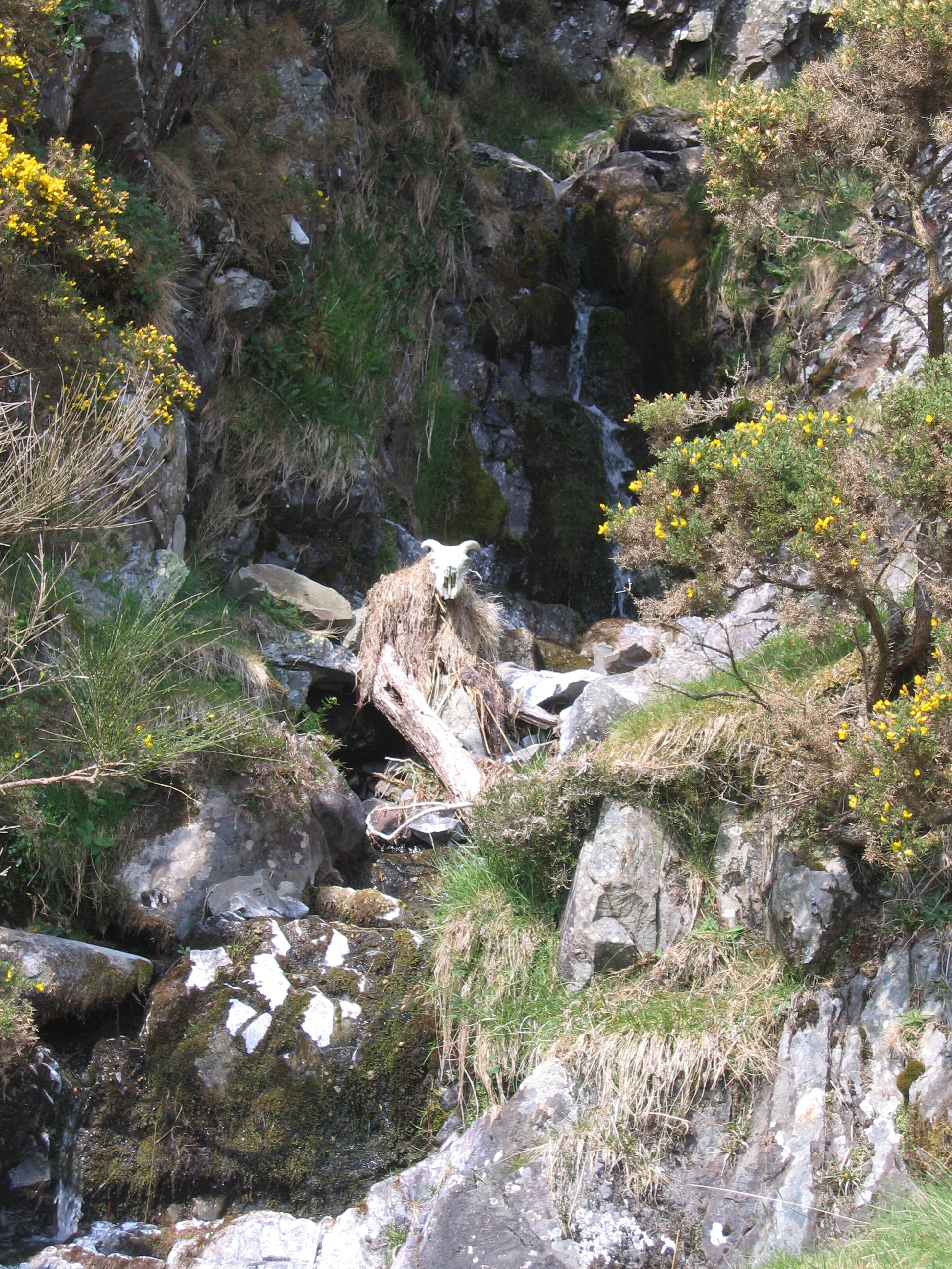 river god sculpture with sheep skull