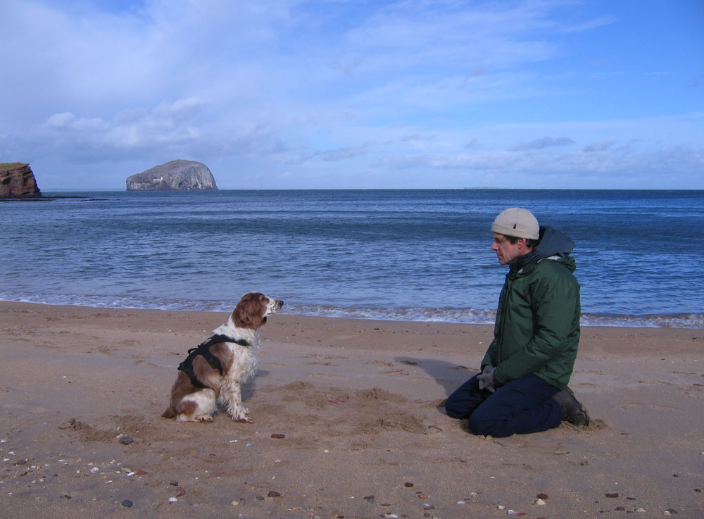 man and dog on Seacliff beach
