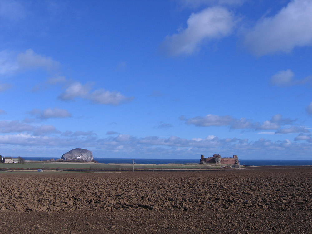 view of Bass Rock and castle across fields