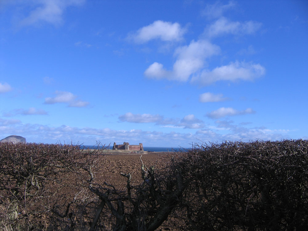 distant castle seen beyond field and hedge