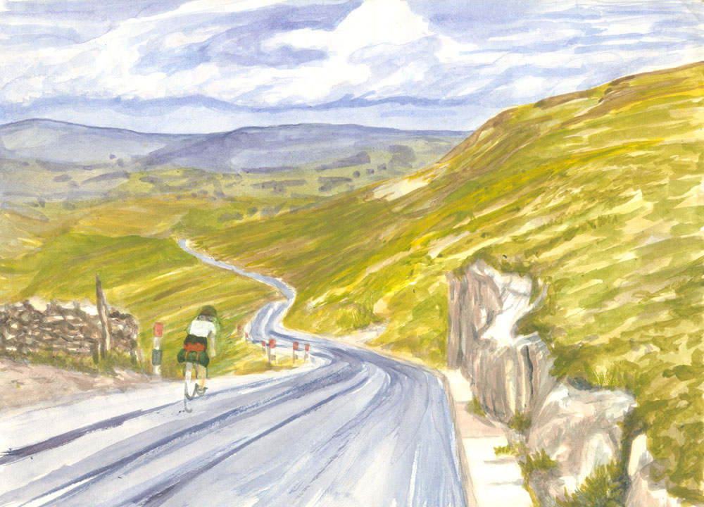 Fleet Moss painting on paper, A4, either watercolour or acrylics