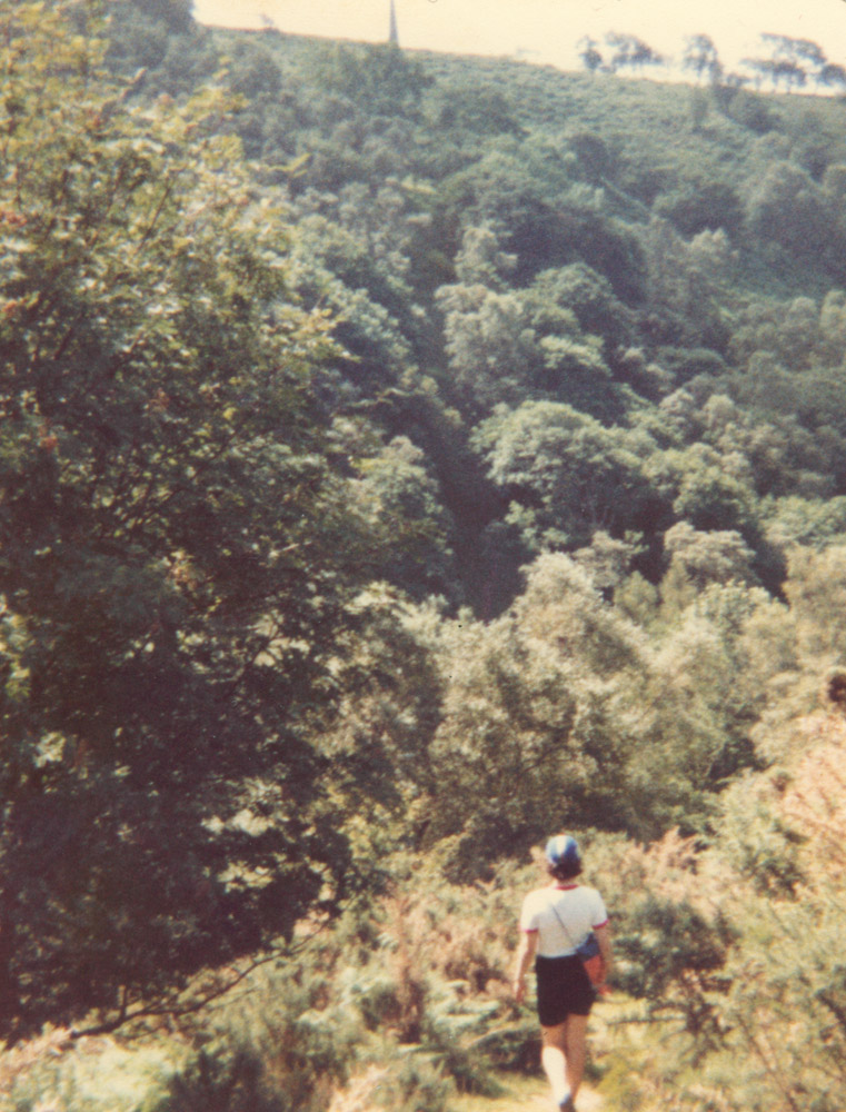 photo of figure striding into trees