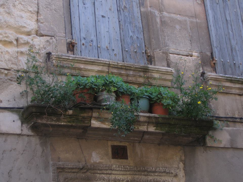 plant pots under a window in Arles