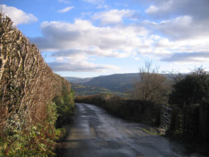 a view down the lane